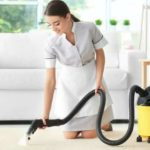 Best Carpet Cleaner For Old Pet Urine